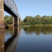 про реку Сож 3 :: Александр Прокудин