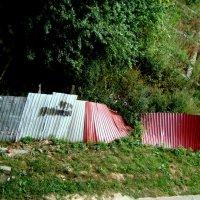 Тогда построй ещё один забор... :: Marina Bernackaya Бернацкая