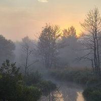 И горят серебряные росы...© :: Roman Lunin
