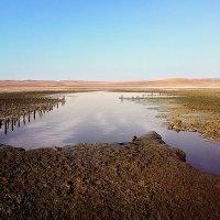 Чокракское грязевое озеро :: Юлия Новикова