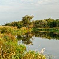На рыбалке :: Андрей Дворников