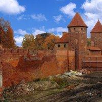 Идут реставрационные работы :: Сергей Карачин