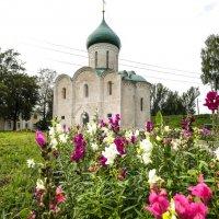 Спасо-Преображенский собор :: Георгий