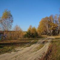 Осенними дорогами :: Татьяна Георгиевна