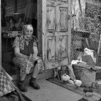 За плечами трудная жизнь :: Евгений Кривошеев