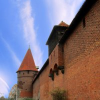Стена замка :: Сергей Карачин