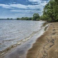На берегу Рыбинского водохранилища :: leo yagonen