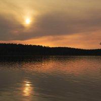 Вечер у озера :: Aнна Зарубина