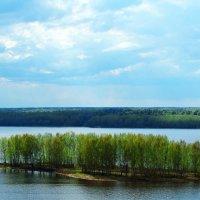 островок на Волге :: Сергей Бойцов
