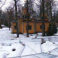 Апрельский снег. :: Татьяна