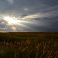 Закат в последний день лета... :: Лариса Димитрова