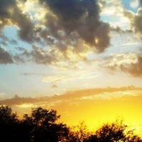 На закате солнца :: татьяна