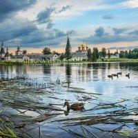 Иверский монастырь и утки :: Юлия Батурина
