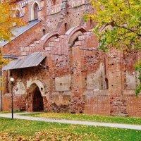 Руины Домского собора в Тарту :: Aida10