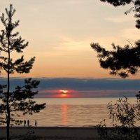 Цвета заката над Финским заливом :: veera (veerra)