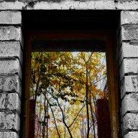 Вид на осень :: Ирина АЛЕКСАндрович