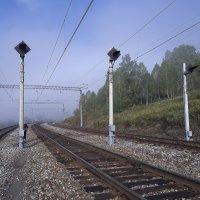 туман3 :: Павел Савин