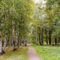 Сентябрь в парке (1) :: Виталий