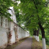 стена собора :: Владимир