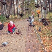 Осенняя прогулка в парке. :: Алексей Хаустов