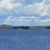 Ладожское озеро :: Вера Щукина
