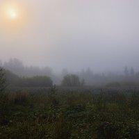 в тумане рассвета.. :: Геннадий ,