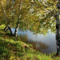 Осенний вальс :: Нэля Лысенко
