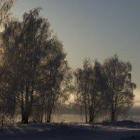 Скоро весна :: Валерий К.