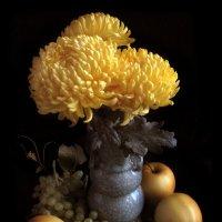 Желтые хризантемы. :: Nata