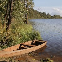 На озере :: Галина Новинская