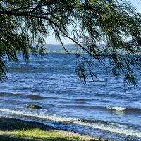 Любимый берег :: Ирина АЛЕКСАндрович