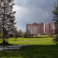 Слепой осенний дождь :: Юрий Велицкий