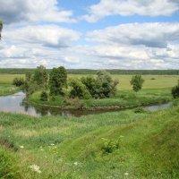 Летом у излучины реки :: Татьяна Георгиевна