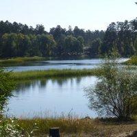 Озеро Лебяжье :: Наиля