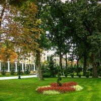 В осеннем парке :: Elena