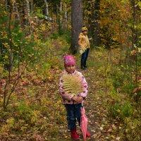 Проргулка по лесу :: Евгений Ветров