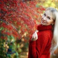 Осень :: Алексей Силин
