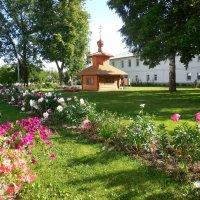 Толгский монастырь :: Надежда