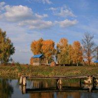 Осень-красавица в дом к нам пришла ... :: Евгений Юрков