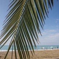 пляж :: Оксана Горбунова