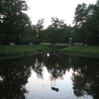 Вечер в Екатерининском парке :: Наталья Герасимова