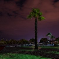 Зеленый пляж... :: Ruslan