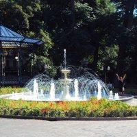 Одесса. В городском парке. :: Ирина Диденко
