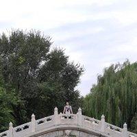Китай. :: Murat Bukaev