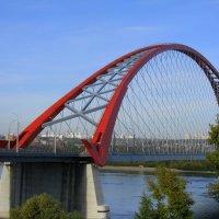 Бугринский мост :: Марина Таврова