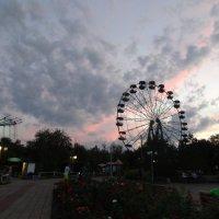 Парк вечером. :: Елизавета Успенская