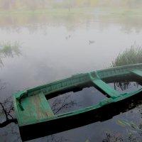 Осенний пруд. :: Сергей Iv
