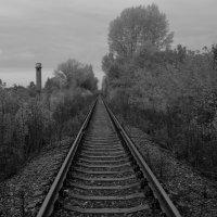 Дорога уходит в даль. :: Дмитрий Арсеньев