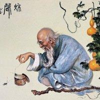 Китайский мудрец :: dindin