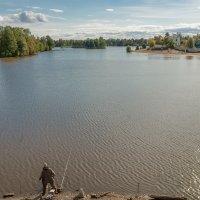 На озере Разлив (3) :: Виталий